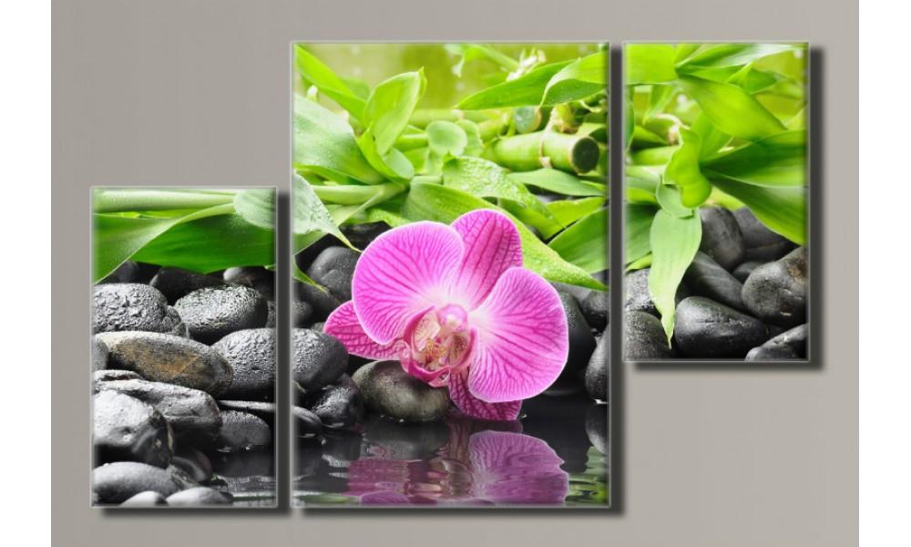 Модульная картина Орхидеи на камнях-3 80х123 см (HAT-142)