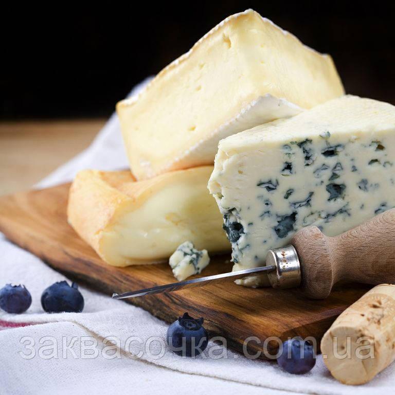 Закваска для сыров с ПЛЕСЕНЬЮ(мягких) на 100л молока