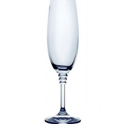 Набор бокалов для шампанского 190 мл 6 шт Olivia Bohemia 40346/190, фото 2