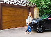 Гаражные ворота DoorHan 2200*2200, фото 1