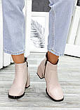 Ботинки пудра кожа Brandi 7505-28, фото 2