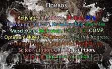 Поступление: Activlab, Alpha Bottle, BioTech, BSN, DNA Supps (OLIMP), Kevin Levrone, Mad Max, Muscle Care, MyProtein, NOSOROG, OLIMP, Optimum Nutrition, OstroVit, Powerful Progress, Puritan's Pride, R1 (Rule One), Real Pharm, Scitec Nutrition, Ultimate Nutrition, Universal, Yamamoto nutrition.