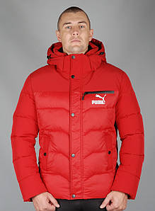 Зимняя спортивная куртка Puma (Puma-zzz-9905-1)