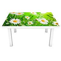 Наклейка на стол Живые Ромашки (3Д виниловая пленка ПВХ) Цветы Зеленый 600*1200 мм, фото 1