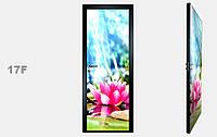 """Зеркальная межкомнатная дверь серии """"Фото"""" фабрики Аксиома модель 17F"""