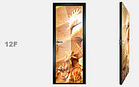 """Дзеркальна міжкімнатні двері серії """"Фото"""" фабрики Аксіома модель 12F"""
