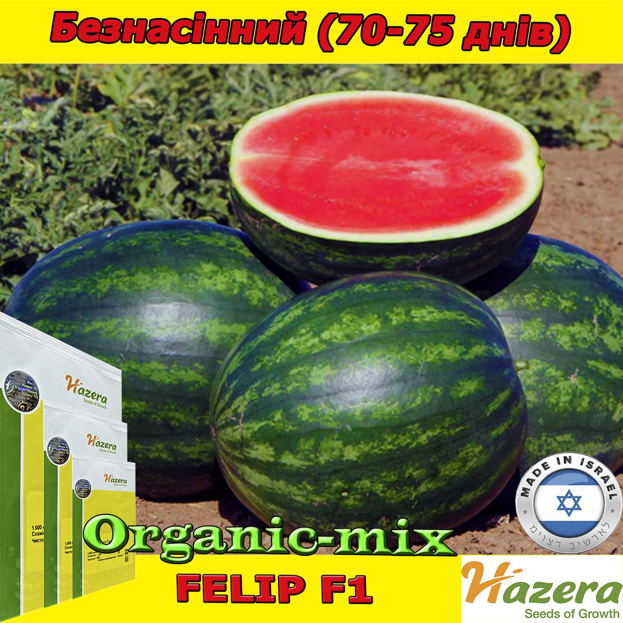Семена, арбуз бессемянный, Фелип F1, ТМ Нazera (Израиль) проф. пакет 500 семян