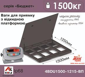 Весы для приямка с откидной платформой 4BDU1500-1215ВП-Б, фото 2