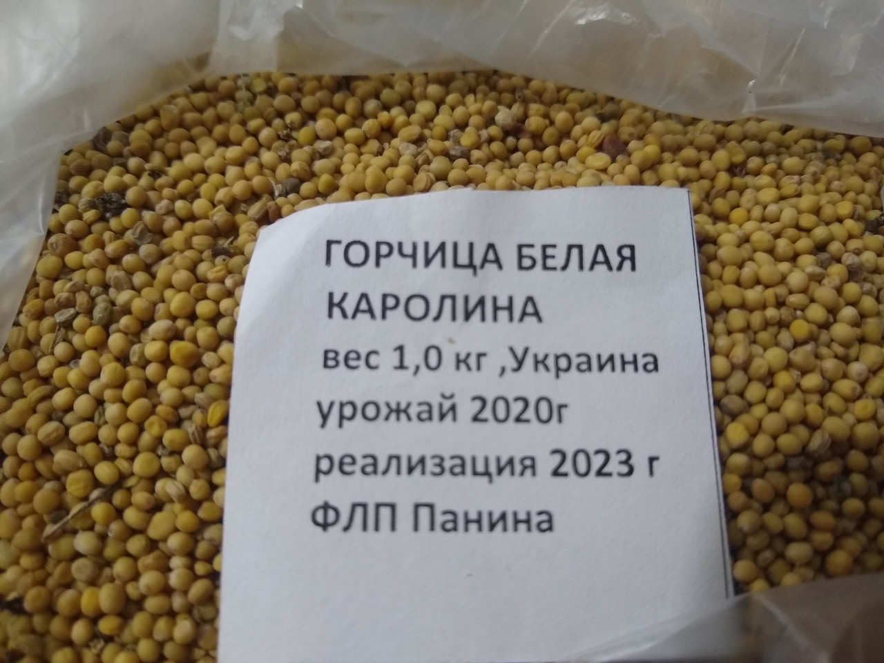 Насіння гірчиці білої сорт Кароліна 1 кг сидерат Україна