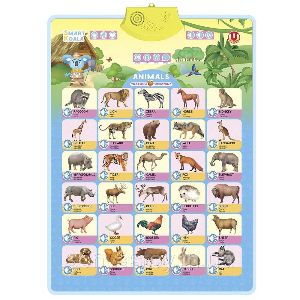 Интерактивный плакат (аудио постер) Овощи, Фрукты, Дикие животные, на 3-х языках, Smart Koala, 1+