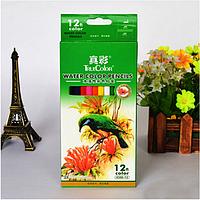 Набор акварельных карандашей TrueColor в бумажной коробке, 12цветов.