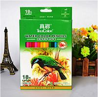 Набор акварельных карандашей TrueColor в бумажной коробке, 18цветов