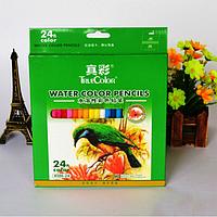 Набор акварельных карандашей TrueColor в бумажной коробке, 24 цвета