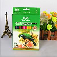 Набор акварельных карандашей TrueColor в бумажной коробке, 36 цветов