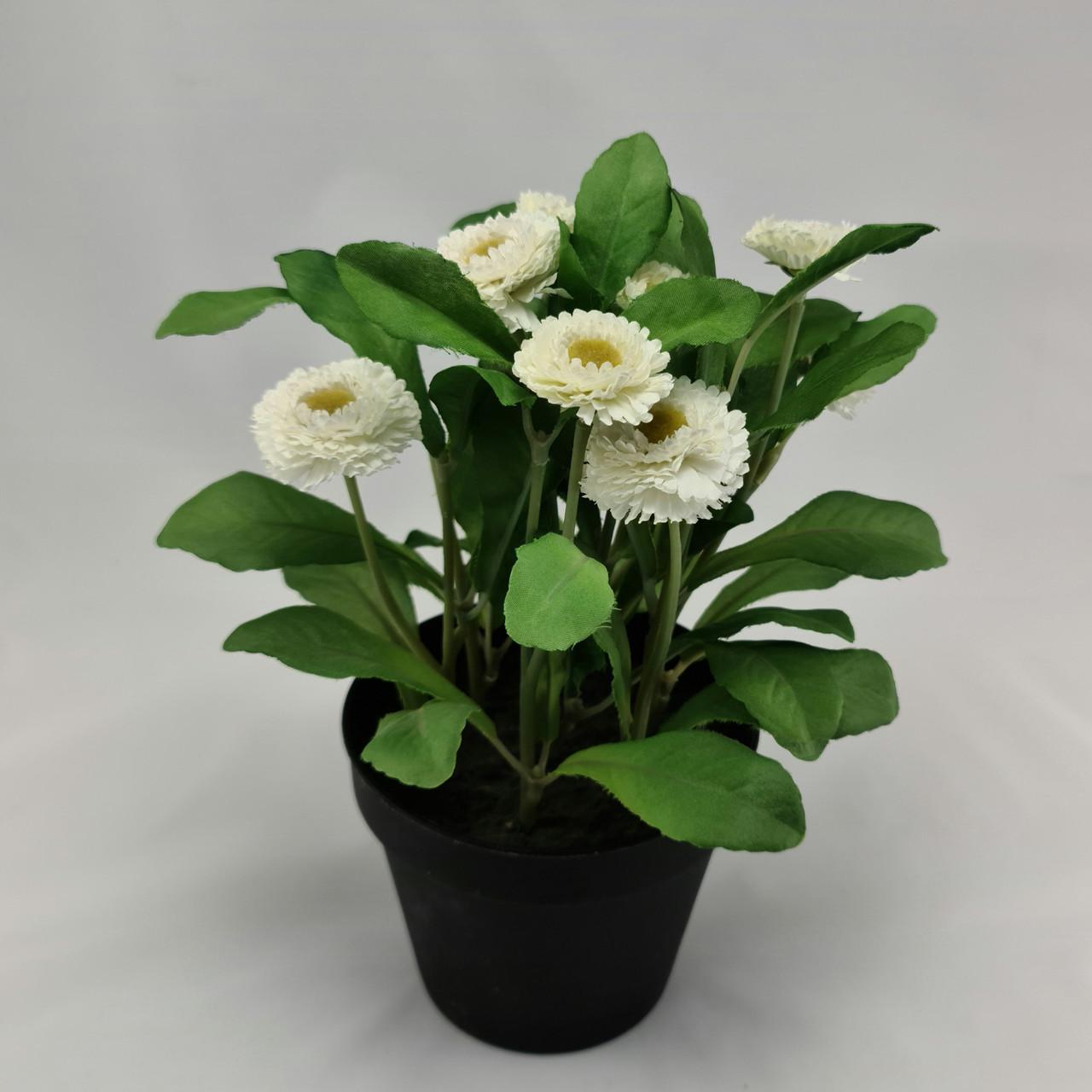 ФЕЙКА Искусственное растение в горшке, Маргаритка, 12 см, ИКЕА, IKEA, FEJKA
