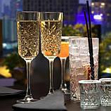 Pasabahce Timeless Набор бокалов для шампанского 12*175 мл (440356/12), фото 2