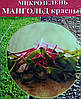 Семена для микрозелени Мангольд 100 г