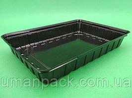 Упаковка для суші ПС-61 Чорна 27,5*19,5*40 (50 шт))