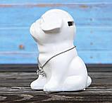 Копилка собачка Doglady белая керамика h13см 4506700, фото 4