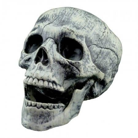 Череп бутафорский с подвижной челюстью (пластик), фото 2