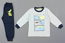 {есть:4 года 104 СМ} Пижама для мальчиков Setty Koop, Артикул: PJM096-серый [4 года 104 СМ]