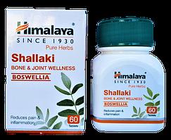 Шалаки, Шаллаки, Shallaki (60cap) при болях у суглобах, артриті, остеопорозі, падагре та ін.