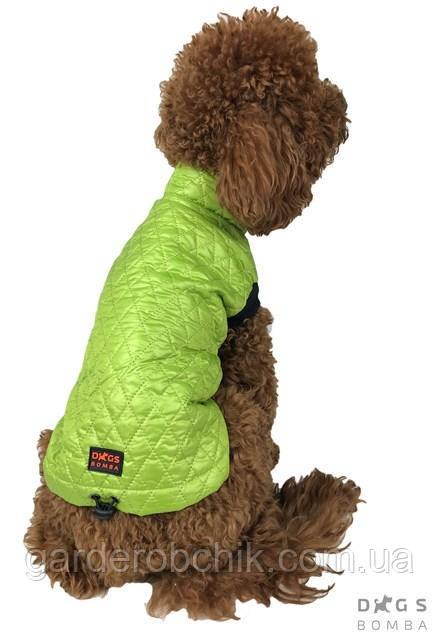 Жилет стеганный, куртка для собаки G-31. Одежда для собак