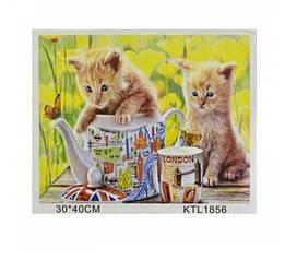 Картина по номерам BBMTOYS KTL 1856 в коробке 40х30 см