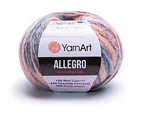 YarnArt Allegro (ЯрнАрт Аллегро) №742 (Пряжа полушерсть, нитки для вязания), фото 1