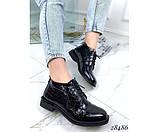 Туфли TOTO на шнуровке, фото 4