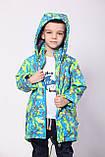 Куртка демисезонная для мальчика, фото 2