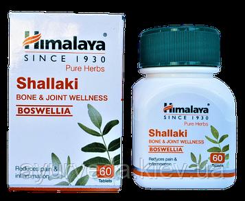 Шалаки, Шаллаки, Shallaki (60 таб) при болях в суставах, артрите, остеопорозе, падагре и др.