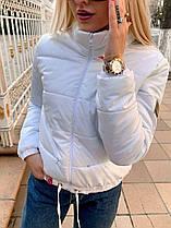 Тепла жіноча модна куртка новинка 2020