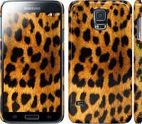 "Чехол на Samsung Galaxy S5 g900h Шкура леопарда ""238c-24"""