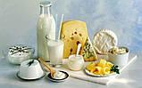 """GREENFLASH БАД – """"МЦ плюс""""  Минерально-витаминный комплекс для оздоровления костных тканей, фото 3"""