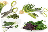 Кухонные ножницы для нарезки зелени Fackelmann, фото 3