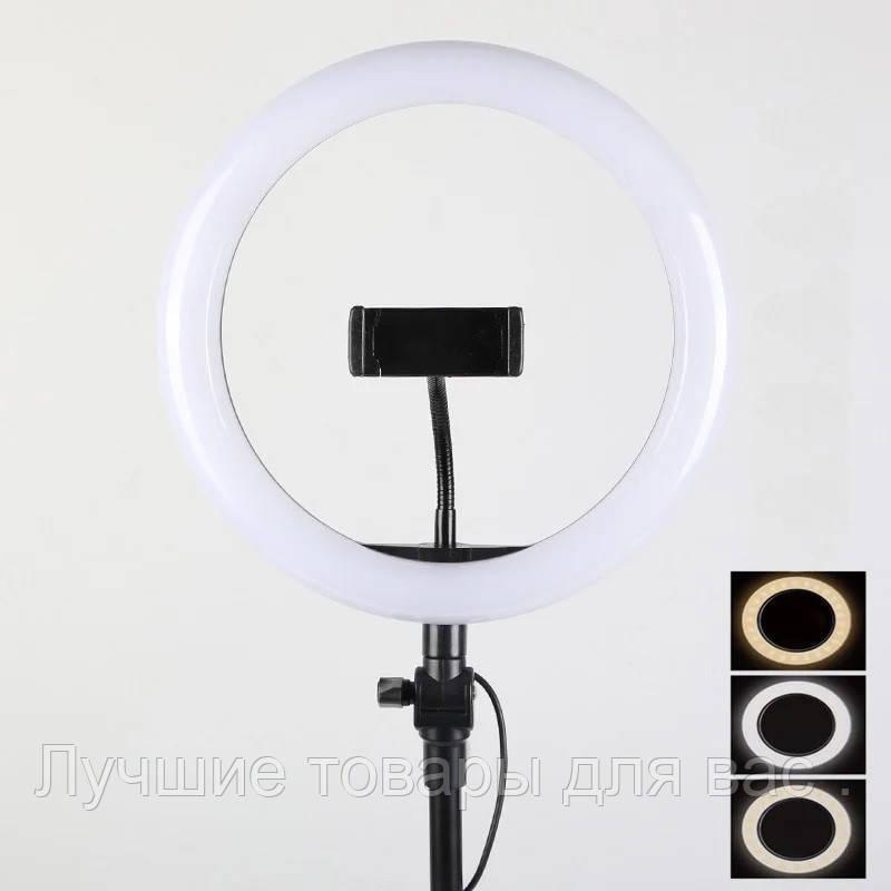 Кольцевая лампа LED 21 см. с раздвижным  штативом 160 см .