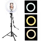 Кольцевая лампа LED 21 см. с раздвижным  штативом 160 см ., фото 3