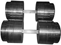 Гантели 2 по 50 кг разборные металл (металеві гантелі розбірні наборні наборные для дома металлические), фото 1