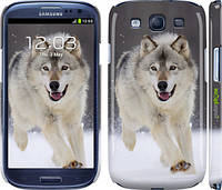 "Чехол на Samsung Galaxy S3 Duos I9300i Бегущий волк ""826c-50"""