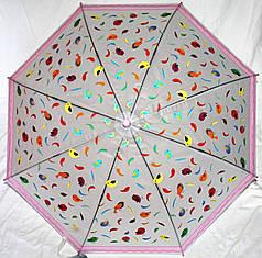 Зонт-трость детский SR K034 1948 полупрозрачный клеенка птички