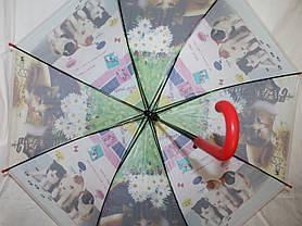 Зонт-трость детский SR К020 зелено-белый котята и цветы, фото 2