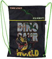Сумка для взуття Dino World 46*33см, 210D PL, Class