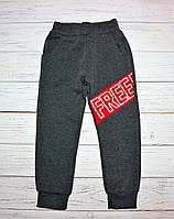 Теплые спортивные штаны для мальчика Active Венгрия, фото 1