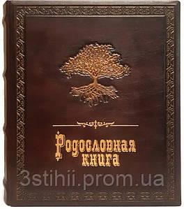 Родословная книга Макей кожаная (620-07-07) Коричневая