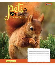 Зошит в лінію 12 л 1 Вересня А5 Pets heart мікс 4 обкладинки (761782)