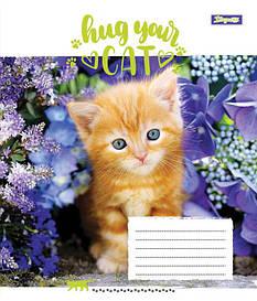 Тетрадь в линию 36 л 1 Вересня А5 Hug Your Cat микс 4 обложки (762600)
