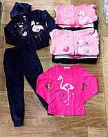 Велюровый спортивный костюм для девочек тройка Seagull 8-14 лет