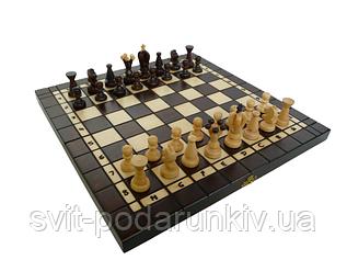Шахматы и нарды 143