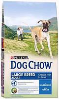 Корм для собак Dog Chow Large Breed с индейкой, 14кг